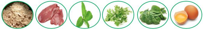 Sources alimentaires apportant de la vitamine B9 (folates)