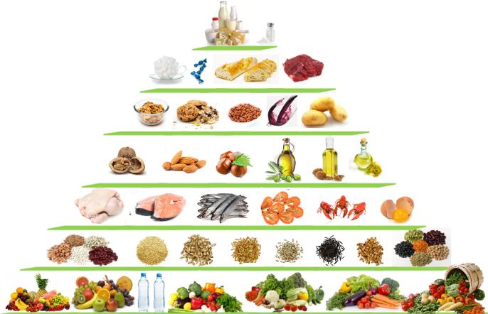 Pyramide alimentaire pour une alimentation équilibrée