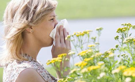 allergie-printemps.png