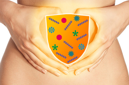 Immunité et flore intestinale
