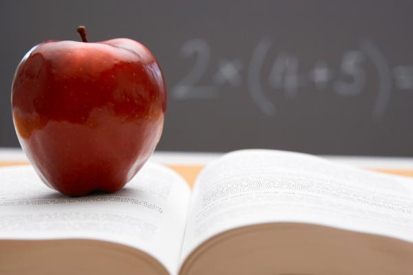 Alimentation et examens
