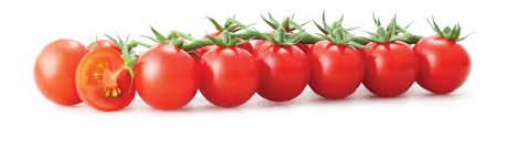 Alimentation soleil lycopène tomates