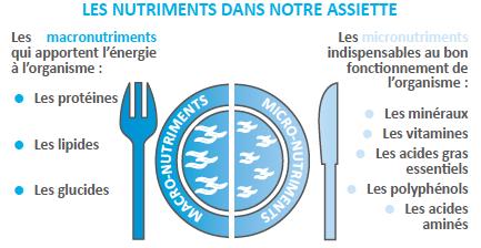 les nutriments et mcironutriments présents dans notre assiette
