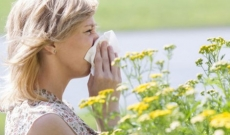 Allergies de printemps : quelles solutions en micronutrition ?